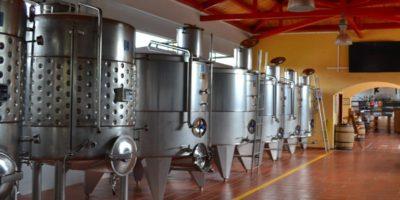 fermentazione malolattica